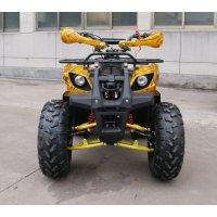 Квадроцикл GreenCamel Atakama T200 (48V 800W R8 Дифференциал) Золотая осень