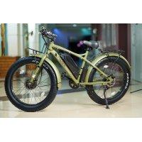 Велогибрид VOLTECO BIGCAT DUAL (Green-1947)